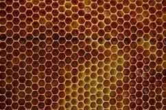 Hexagones jaune-bruns de nid d'abeilles images libres de droits