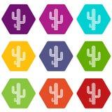 Hexahedron för färg för kaktussymbolsuppsättning vektor illustrationer