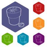 Hexahedron médico del vector de los iconos de la botella y de la tableta de la marijuana ilustración del vector