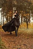 Hexe des jungen Mädchens eine schwarze Witwe in einem schwarzen Kleid und in einer Tiara galoppiert zu Pferde auf einen friesisch Lizenzfreie Stockfotografie
