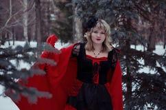 Hexe im Wald Stockbilder