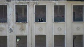 Hexe kleidete im schwarzen Schreien hinter einem Fenster der ruinierten alten Villa an stock footage