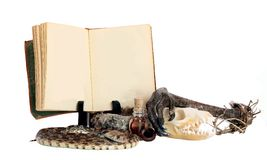Hexen-Trank-Buch und Bestandteile Lizenzfreies Stockbild