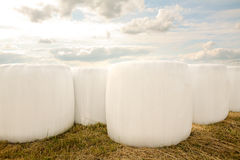Hey bale packed in white Royalty Free Stock Photos
