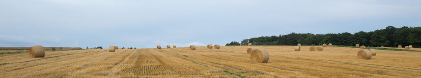 Hey bale wheat field Royalty Free Stock Photos