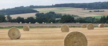 Hey bale wheat field Royalty Free Stock Image