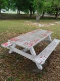 Hey Boo Boo..i found a picnic table Royalty Free Stock Photos