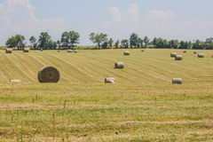 Hey field in the midwest and large round bails. stock photo