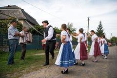HEYIVCI UKRAINA - SEPTEMBER 09, 2016: Skörddagberöm in Arkivfoto