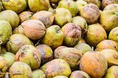 Hög av gamla kokosnötter på jordningen, Thailand Arkivfoton