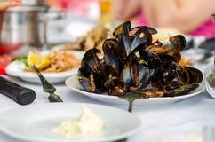 Hög av musslor Royaltyfria Bilder