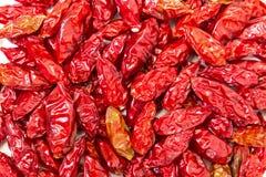 Hög av torkade röda peppar Piri-Piri Fotografering för Bildbyråer