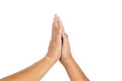 Hög-fem gest av person som två firar prestation Arkivfoto