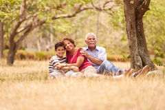 Höga par för morföräldrar som kramar den unga pojken på gräs Royaltyfria Bilder