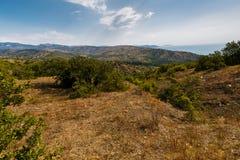 Hügeliges Gelände im Sommer Stockfoto