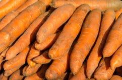 Högen av nya morötter som är till salu på bönderna, marknadsför Arkivfoto