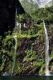 Högväxt vattenfall i Fiordland Arkivfoto