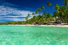 Högväxta kokosnötpalmträd över tropisk ösemesterort sätter på land, Fiji Arkivbild