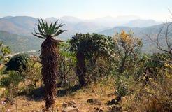 Hhenga Mountains, Swaziland Stock Photos