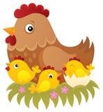 Hühnerthemabild 1 Lizenzfreie Stockfotografie