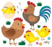 Hühnerthematischer Satz 1 Stockbild