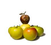 hiérarchie de pomme Photos libres de droits