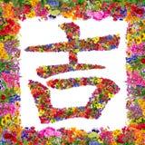 Hiéroglyphe chinois de bonheur Image stock