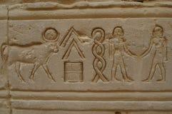 Hiéroglyphes d'Eygpt Photographie stock libre de droits