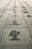 Hiéroglyphes de l'eau Image libre de droits