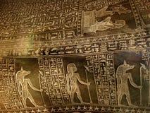 Hiéroglyphes précieux Photos libres de droits