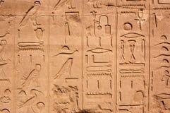Hiërogliefen, Tempel van Karnak, Egypte royalty-vrije stock fotografie