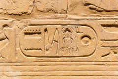 Hiëroglyfisch van faraobeschaving in Karnak Stock Foto