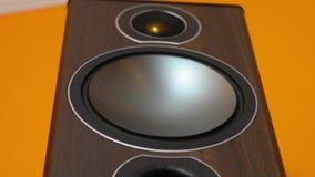 Hi-fi Loudpeaker Membrane stock footage