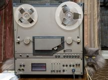 Hi-fi stereo tape recorder and cat. royalty free stock photos
