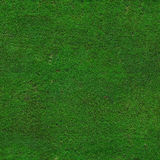 Hi-res green grass texture Royalty Free Stock Photo