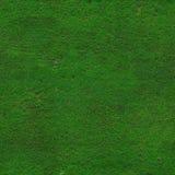 Hi-res green grass texture Royalty Free Stock Photo