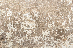 Hi res grunge background and texture Stock Images