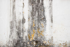 Hi res grunge cement texture and old background Royalty Free Stock Photography