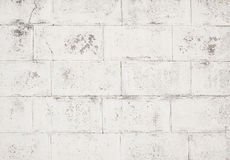 Hi res white grunge background and texture Royalty Free Stock Images