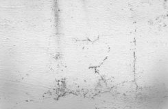 Hi res white grunge textures and background Royalty Free Stock Photo