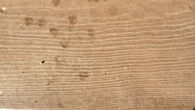 Hi-resolution brown wood texture Royalty Free Stock Images