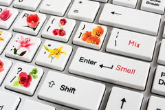Hi-tech. The future of high technologies. The computer synthesizing smells of flowers royalty free stock image