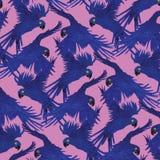 Hiacyntowy ary papugi wzór Obraz Royalty Free