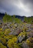 Hibiny berg Royaltyfria Foton