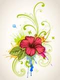 Hibisco stock de ilustración
