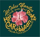Hibisco del Caribe rosado caliente Foto de archivo libre de regalías