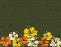 Hibisco en fondo verde ilustración del vector