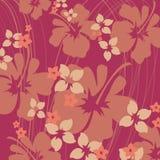 Hibisco rosado y anaranjado Imagen de archivo libre de regalías