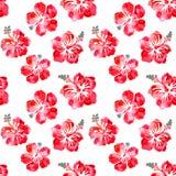 Hibiscus κόκκινο άνευ ραφής σχέδιο watercolor λουλουδιών διανυσματική απεικόνιση