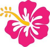 hibiscus λουλουδιών ροζ διανυσματική απεικόνιση